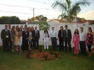 plantio da árvore - comemoração dos 20 anos da VT