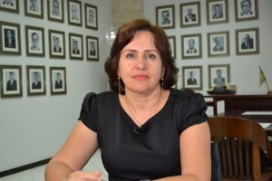 Juíza convocada Silene Coelho, relatora