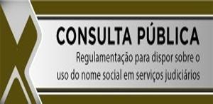 Consulta Pública - Trans
