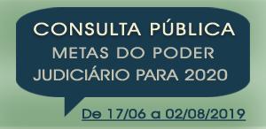 Consulta Pública Metas