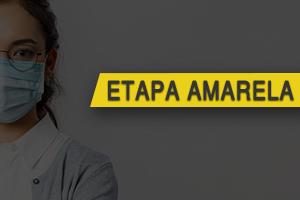 Ir para TRT 18 avança para Etapa Amarela de retomada dos serviços presenciais